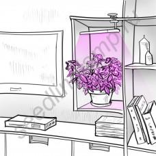 """Фито лампа на прищепке для досвечивания цветов и рассады """"Арктур"""""""